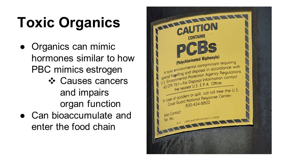 Toxic Organics ●Organics can mimic hormones similar to how PBC mimics estrogen ❖ Causes cancers and impairs organ function ●Can bioaccumulate and enter the food chain