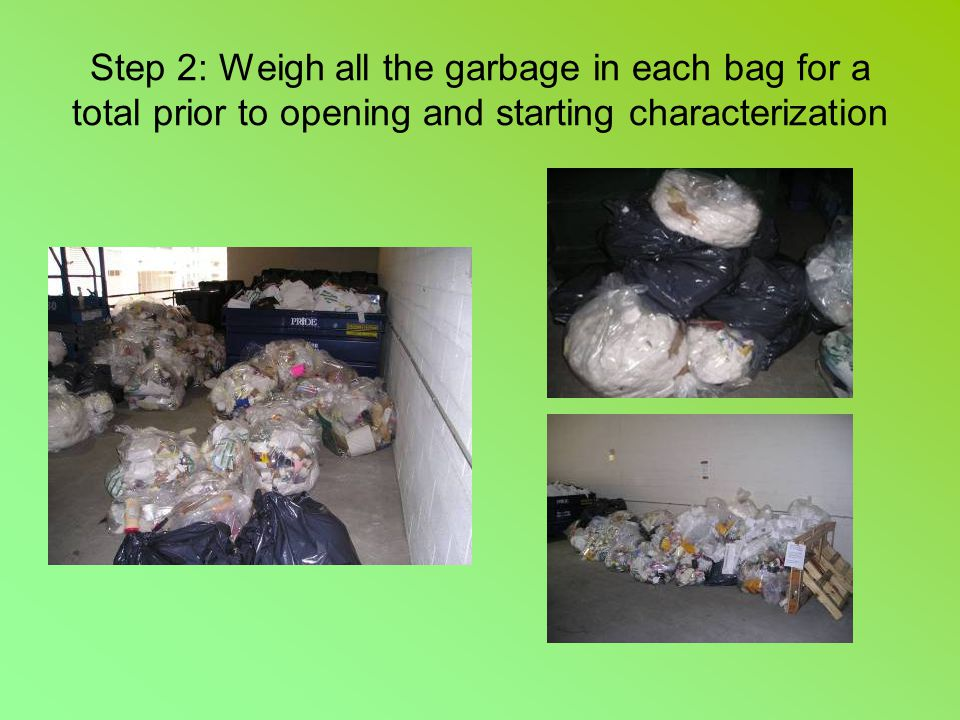 Step 2: Weigh all the garbage in each bag for a total prior to opening and starting characterization