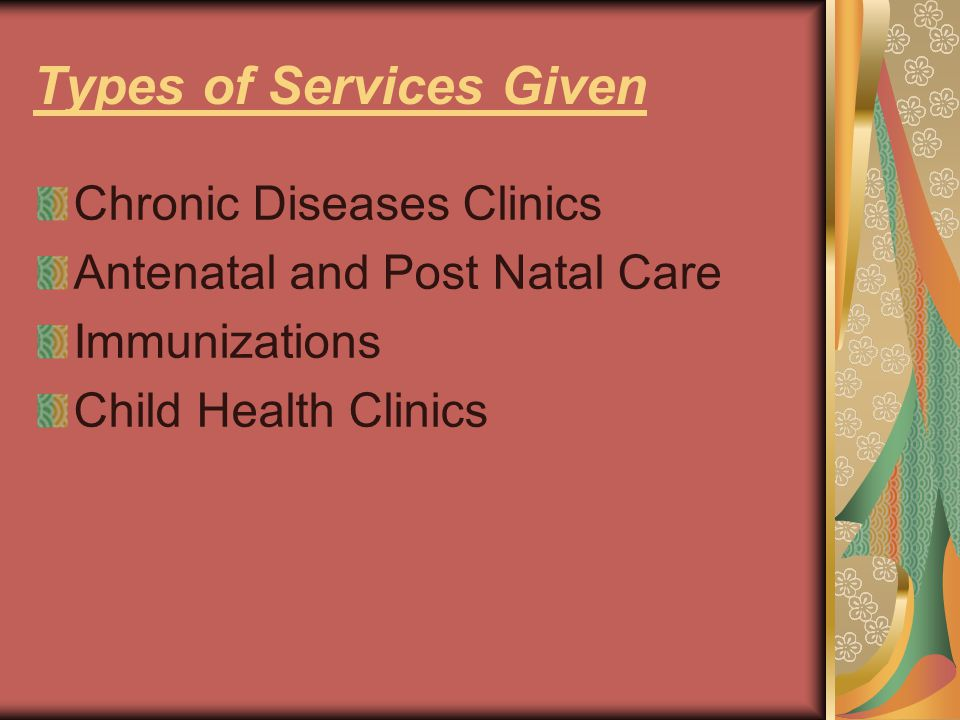 Types of Services Given Chronic Diseases Clinics Antenatal and Post Natal Care Immunizations Child Health Clinics