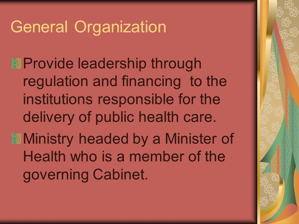 General Organization Provide leadership through regulation and financing to the institutions responsible for the delivery of public health care.