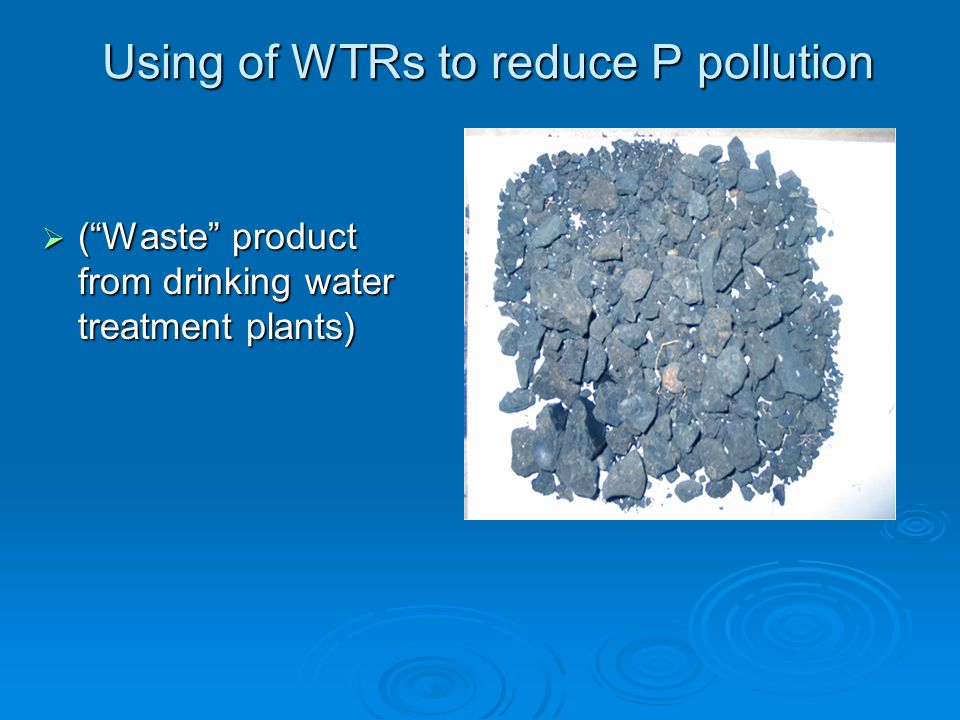 Using of WTRs to reduce P pollution  ( Waste product from drinking water treatment plants)