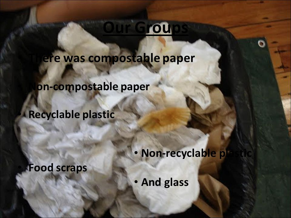 Our Groups There was compostable paper Non-compostable paper Recyclable plastic Non-recyclable plastic Food scraps And glass