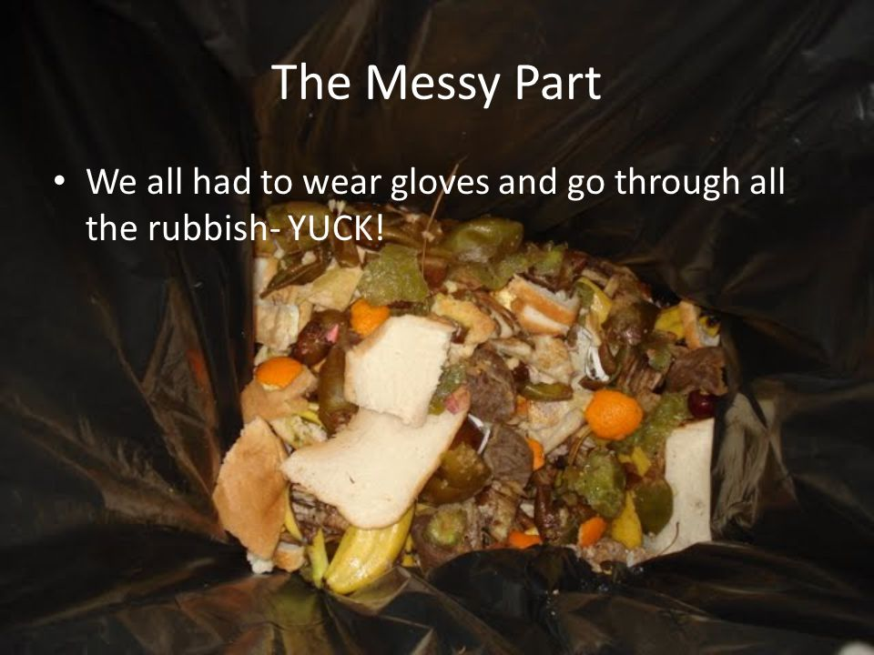 The Messy Part We all had to wear gloves and go through all the rubbish- YUCK!