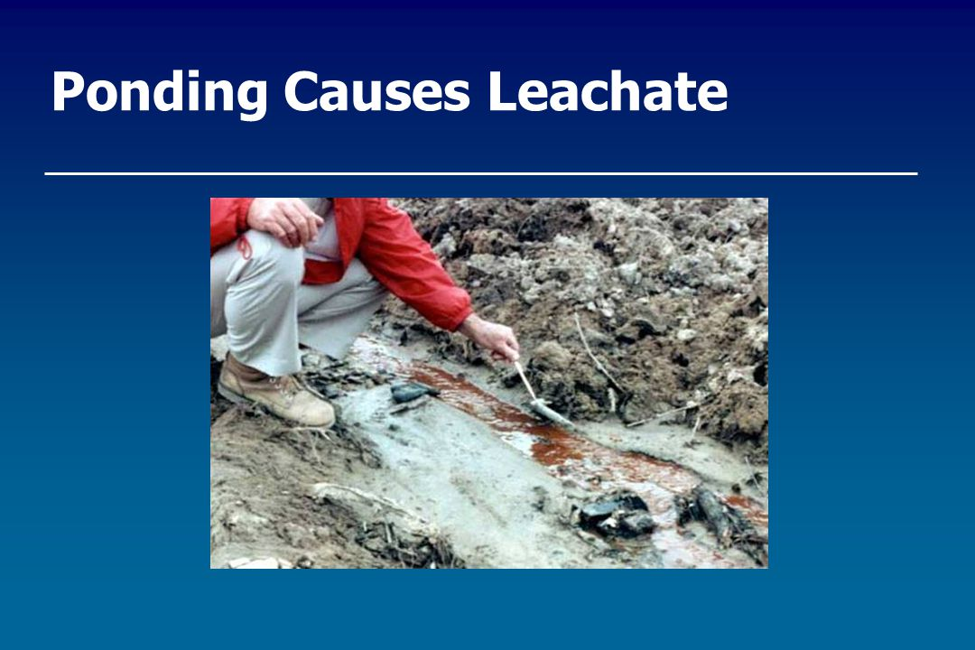 Ponding Causes Leachate