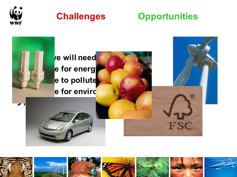 Challenges In future, we will need to…  Pay more for energy  Pay more to pollute  Pay more for environmental goods  Pay more for environmental services Opportunities