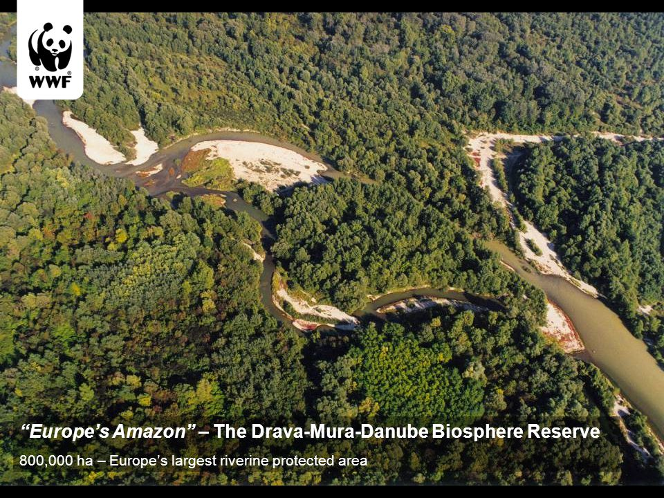 Europe's Amazon – The Drava-Mura-Danube Biosphere Reserve 800,000 ha – Europe's largest riverine protected area