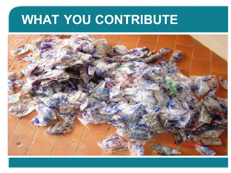 WHAT YOU CONTRIBUTE