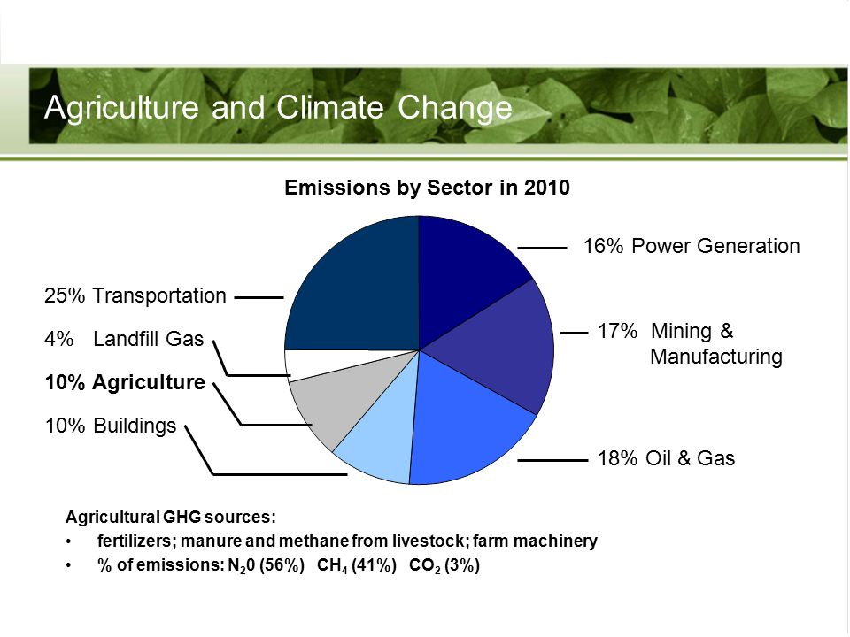 Agriculture and Climate Change Agricultural GHG sources: fertilizers; manure and methane from livestock; farm machinery % of emissions: N 2 0 (56%) CH 4 (41%) CO 2 (3%) Emissions by Sector in 2010 25% Transportation 4% Landfill Gas 10% Agriculture 10% Buildings 16% Power Generation 17% Mining & Manufacturing 18% Oil & Gas