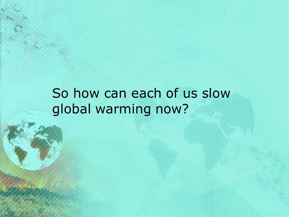 So how can each of us slow global warming now
