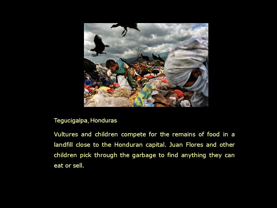 Tegucigalpa, Honduras Vultures and children compete for the remains of food in a landfill close to the Honduran capital.