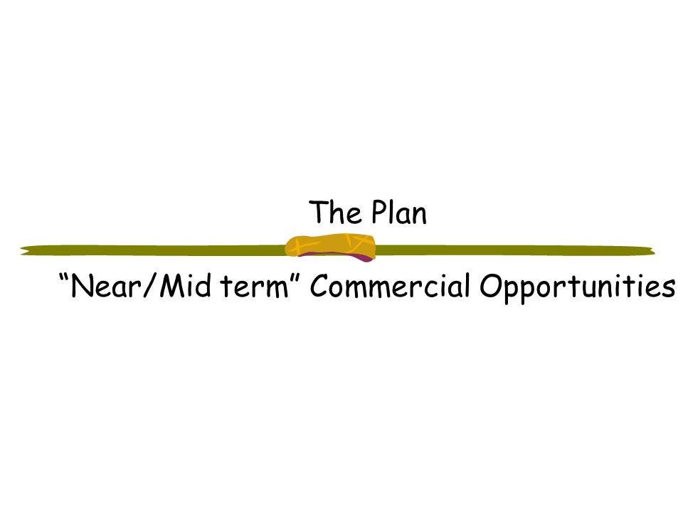 The Plan Near/Mid term Commercial Opportunities