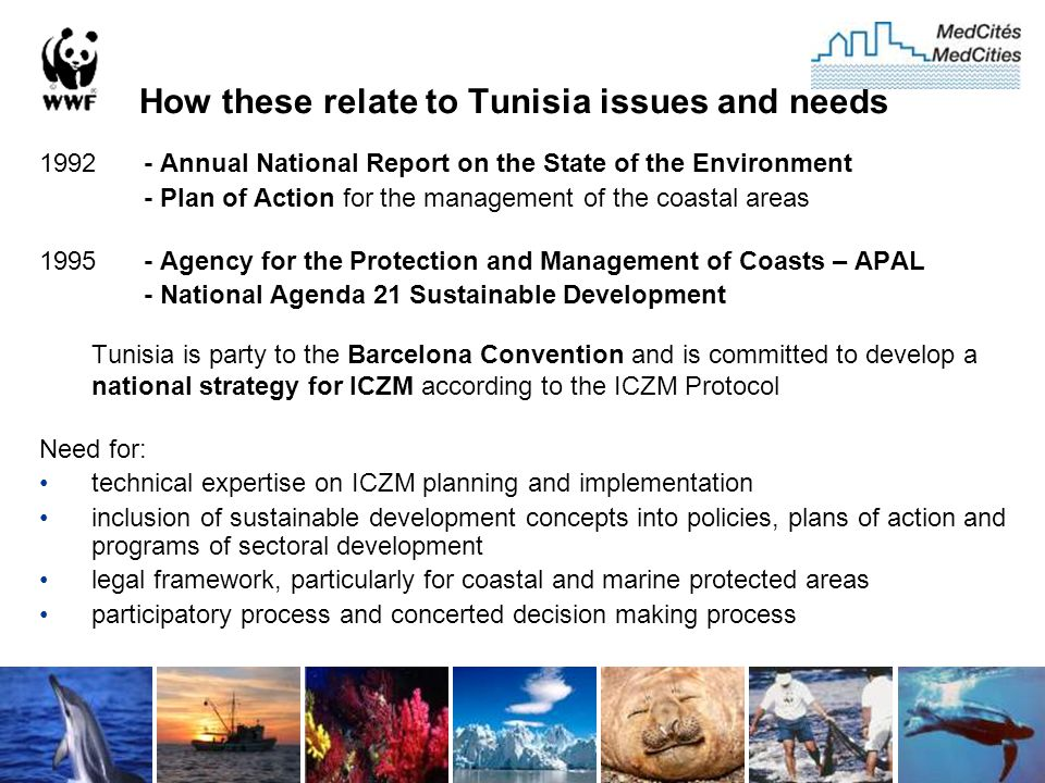 How these relate to Tunisia issues and needs 1992 - Annual National Report on the State of the Environment - Plan of Action for the management of the coastal areas 1995 - Agency for the Protection and Management of Coasts – APAL - National Agenda 21 Sustainable Development Tunisia is party to the Barcelona Convention and is committed to develop a national strategy for ICZM according to the ICZM Protocol Need for: technical expertise on ICZM planning and implementation inclusion of sustainable development concepts into policies, plans of action and programs of sectoral development legal framework, particularly for coastal and marine protected areas participatory process and concerted decision making process