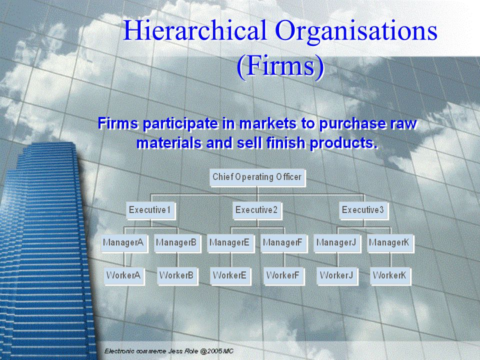 Hierarchical Organisations (Firms)