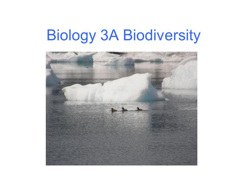 Biology 3A Biodiversity