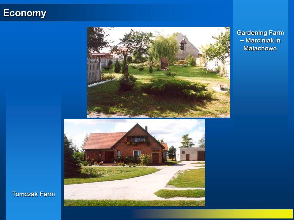 Economy Tomczak Farm Gardening Farm – Marciniak in Małachowo