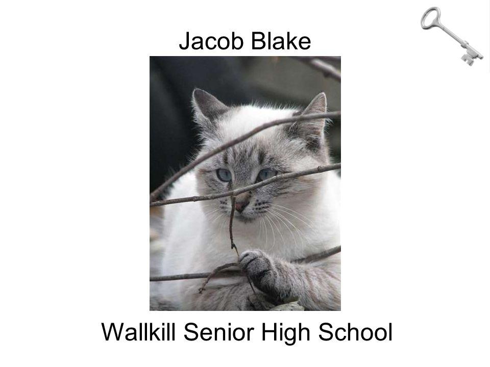 Jacob Blake Wallkill Senior High School