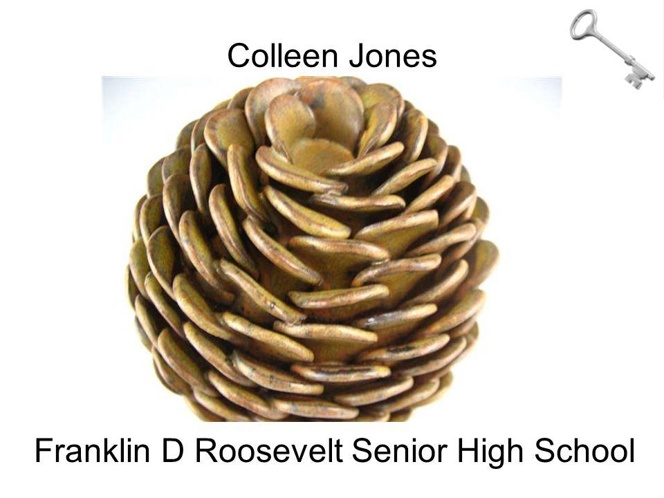 Colleen Jones Franklin D Roosevelt Senior High School