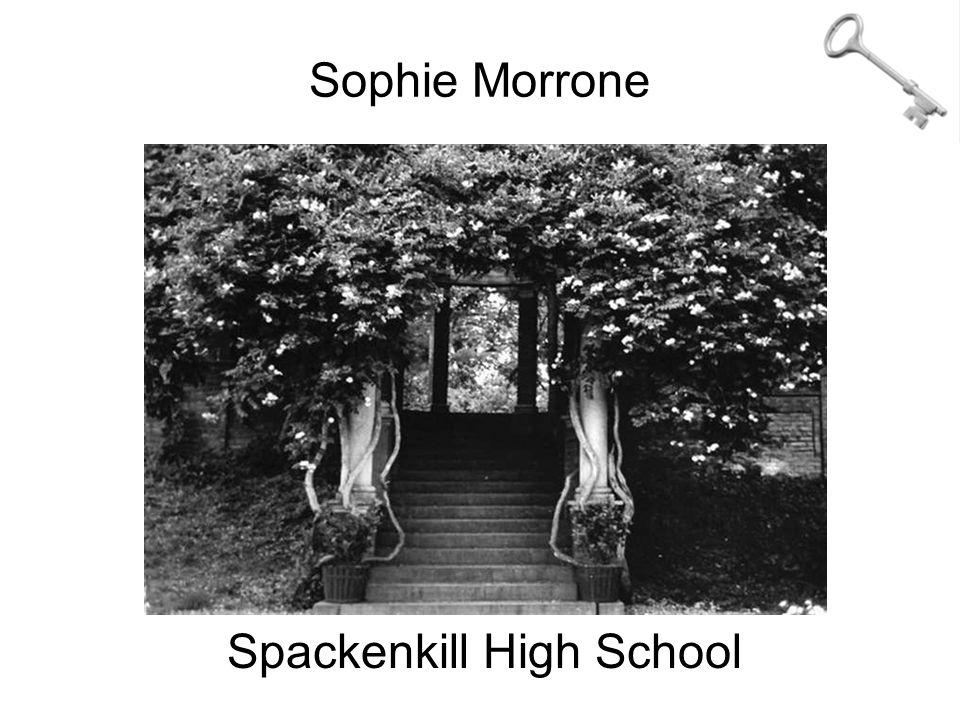 Sophie Morrone Spackenkill High School