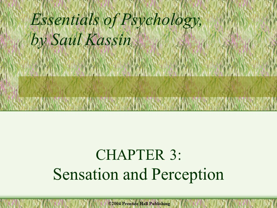 CHAPTER 3: Sensation and Perception Essentials of Psychology, by Saul Kassin ©2004 Prentice Hall Publishing
