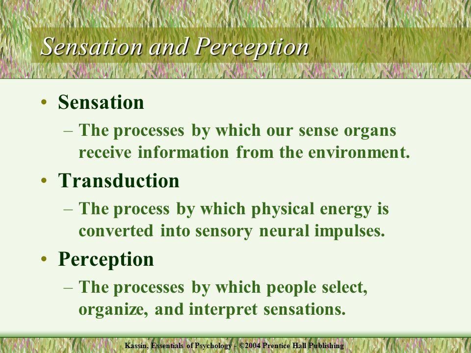 Processes of Sensation & Perception Kassin, Essentials of Psychology - ©2004 Prentice Hall Publishing
