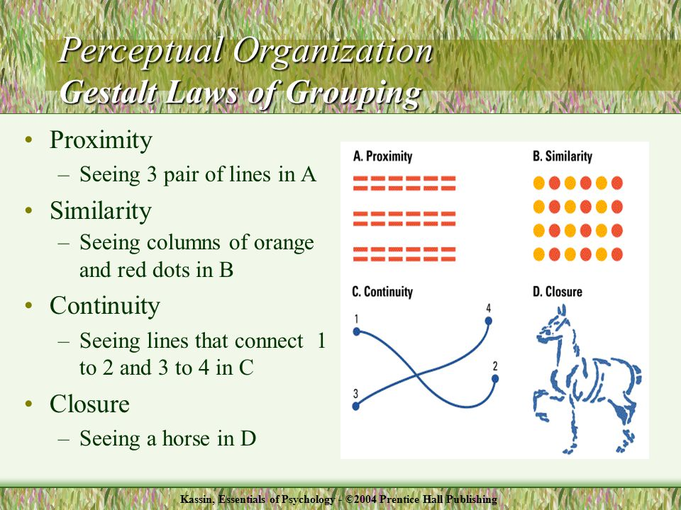 Proximity –Seeing 3 pair of lines in A Similarity –Seeing columns of orange and red dots in B Continuity –Seeing lines that connect 1 to 2 and 3 to 4 in C Closure –Seeing a horse in D Perceptual Organization Gestalt Laws of Grouping Kassin, Essentials of Psychology - ©2004 Prentice Hall Publishing