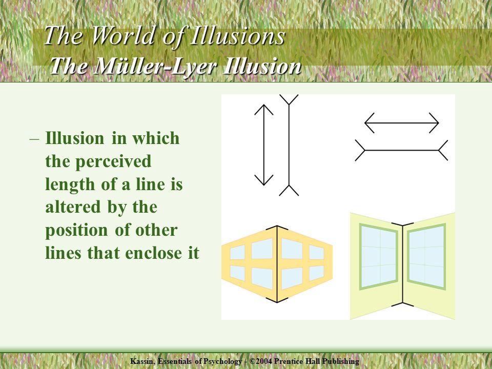 –Illusion in which the perceived length of a line is altered by the position of other lines that enclose it The World of Illusions The Müller-Lyer Illusion Kassin, Essentials of Psychology - ©2004 Prentice Hall Publishing