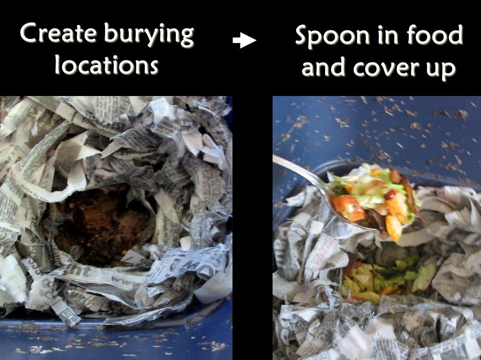 Store food scraps