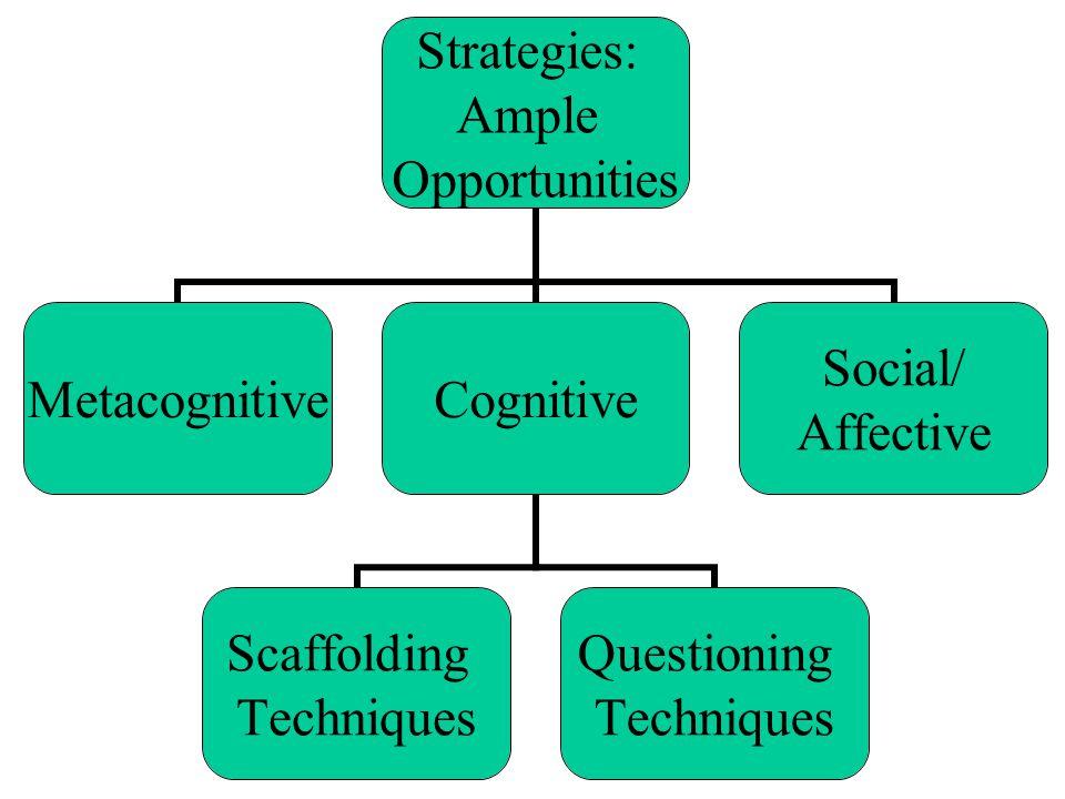 Strategies: Ample Opportunities MetacognitiveCognitive Scaffolding Techniques Questioning Techniques Social/ Affective