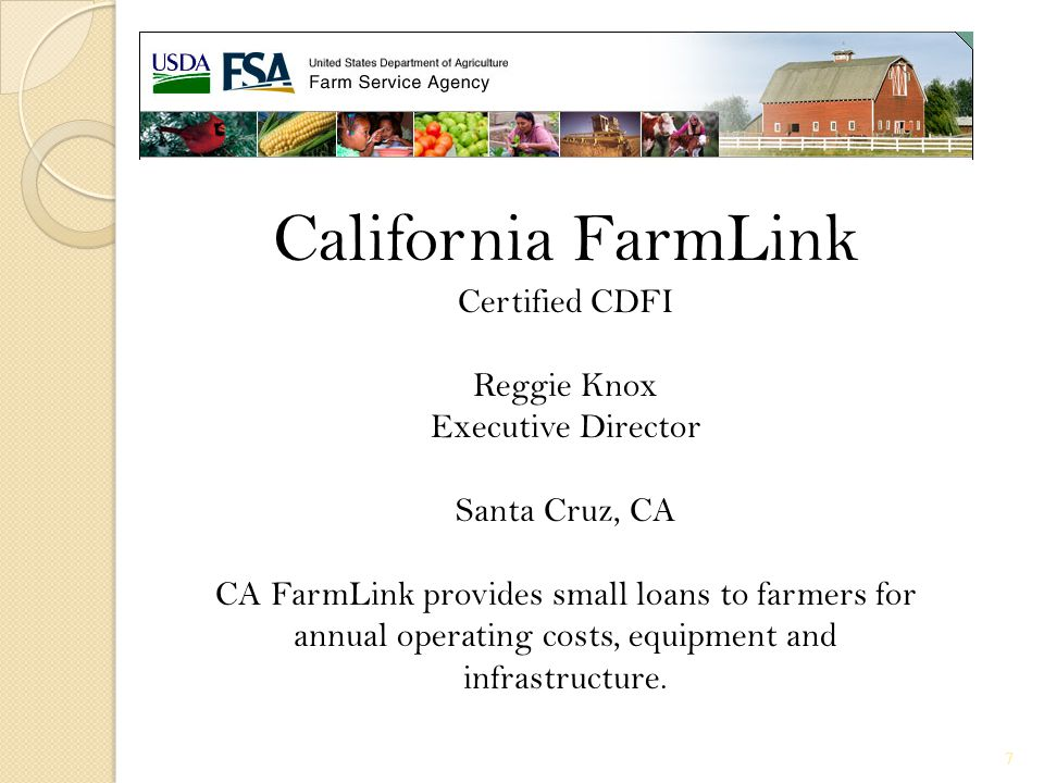 Application Process SELs submit the following to FSA: Application form Loan narrative Balance sheet Cash flow budget Description of farmed land Credit report Environmental information (if needed) Verification of income/debts Financial/production history FSA will: Make determination, approve and obligate loan request 18