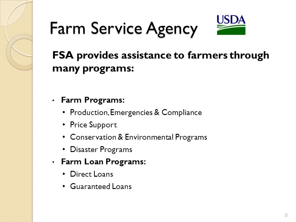 Types of Loans 9 Direct Loans Applicant applies directly to one of the USDA-FSA Service Centers located across the country Loan limits may be made up to $300,000 Guaranteed Loans Applicant applies to an agricultural lender, who then applies to FSA for the guarantee Guaranteed Loan limits may be made up to $1,355,000 (adjusted annually)