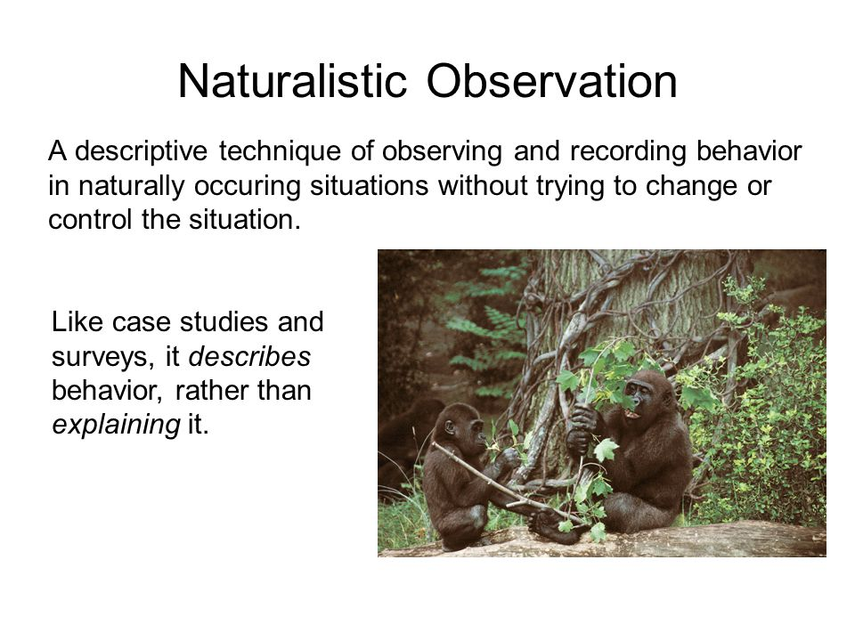 Naturalistic Observation A descriptive technique of observing and recording behavior in naturally occuring situations without trying to change or cont