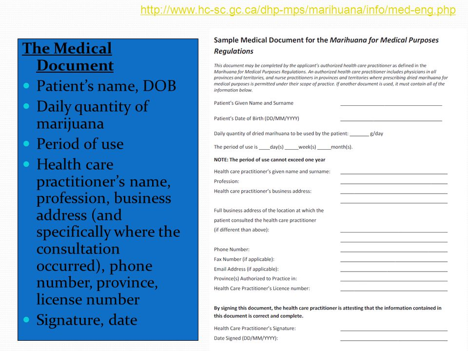The Medical Document Patient's name, DOB Daily quantity of marijuana Period of use Health care practitioner's name, profession, business address (and specifically where the consultation occurred), phone number, province, license number Signature, date http://www.hc-sc.gc.ca/dhp-mps/marihuana/info/med-eng.php