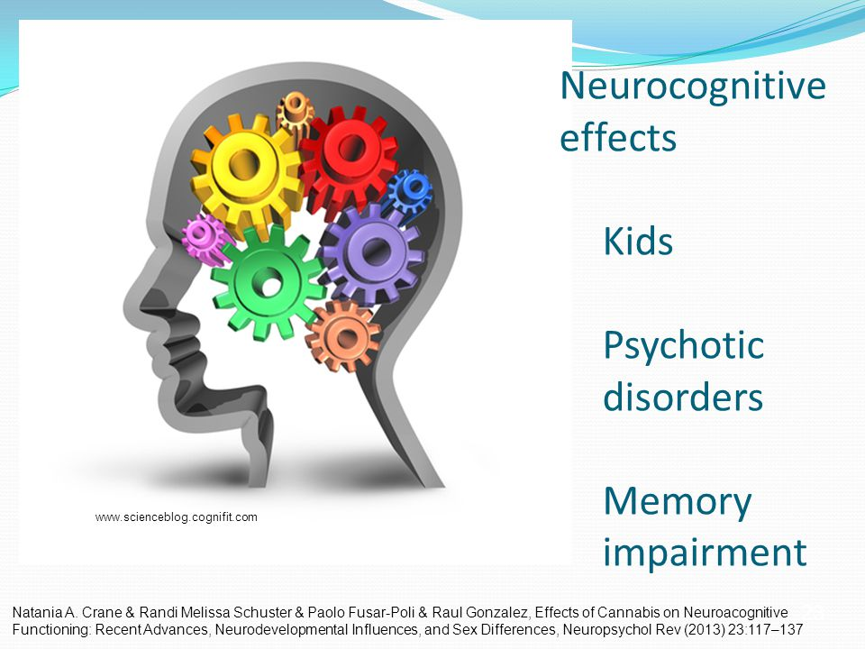 23 Neurocognitive effects Kids Psychotic disorders Memory impairment www.scienceblog.cognifit.com Natania A.