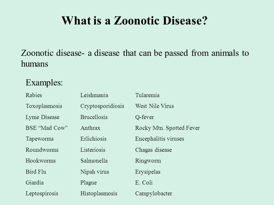 What is a Zoonotic Disease? Zoonotic disease- a disease that can be passed from animals to humans Examples: RabiesLeishmaniaTularemia ToxoplasmosisCry