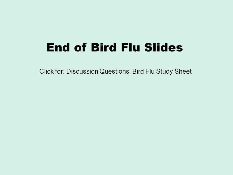 End of Bird Flu Slides Click for: Discussion Questions, Bird Flu Study Sheet