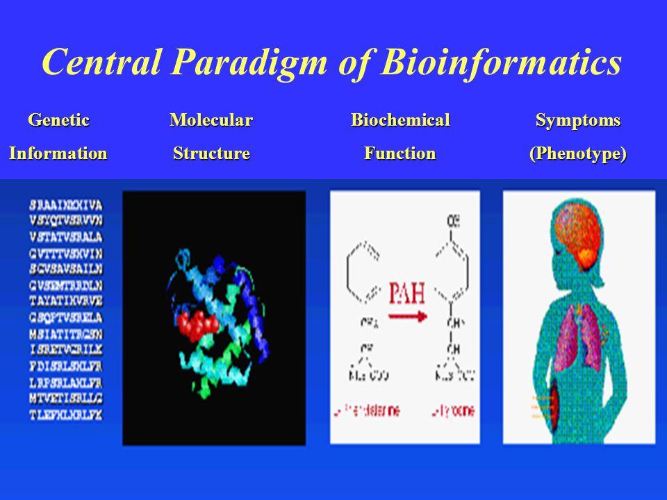 Central Paradigm of Bioinformatics GeneticInformationMolecularStructureBiochemicalFunctionSymptoms(Phenotype)
