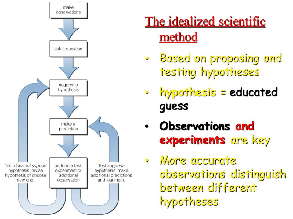 © 2010 Pearson Education, Inc. The idealized scientific method Based on proposing and testing hypotheses Based on proposing and testing hypotheses hyp