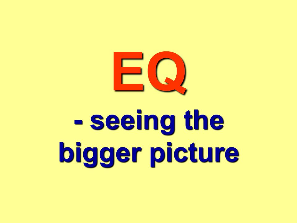 EQ - seeing the bigger picture