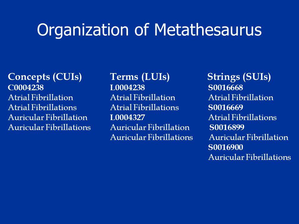 Organization of Metathesaurus Concepts (CUIs) Terms (LUIs) Strings (SUIs) C0004238 L0004238 S0016668 Atrial Fibrillation Atrial Fibrillation Atrial Fi