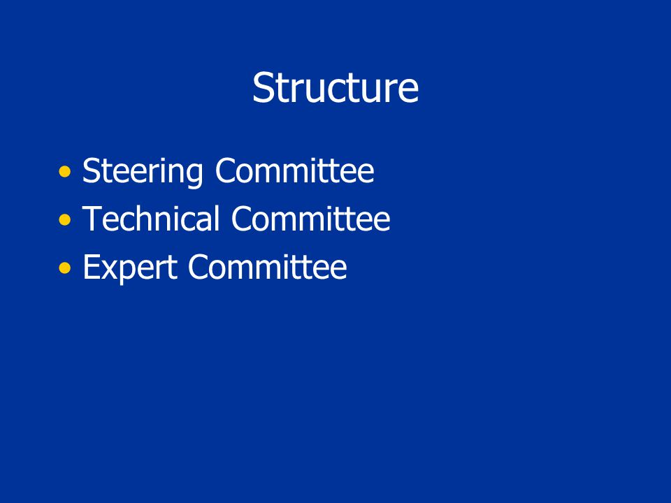 Structure Steering Committee Technical Committee Expert Committee