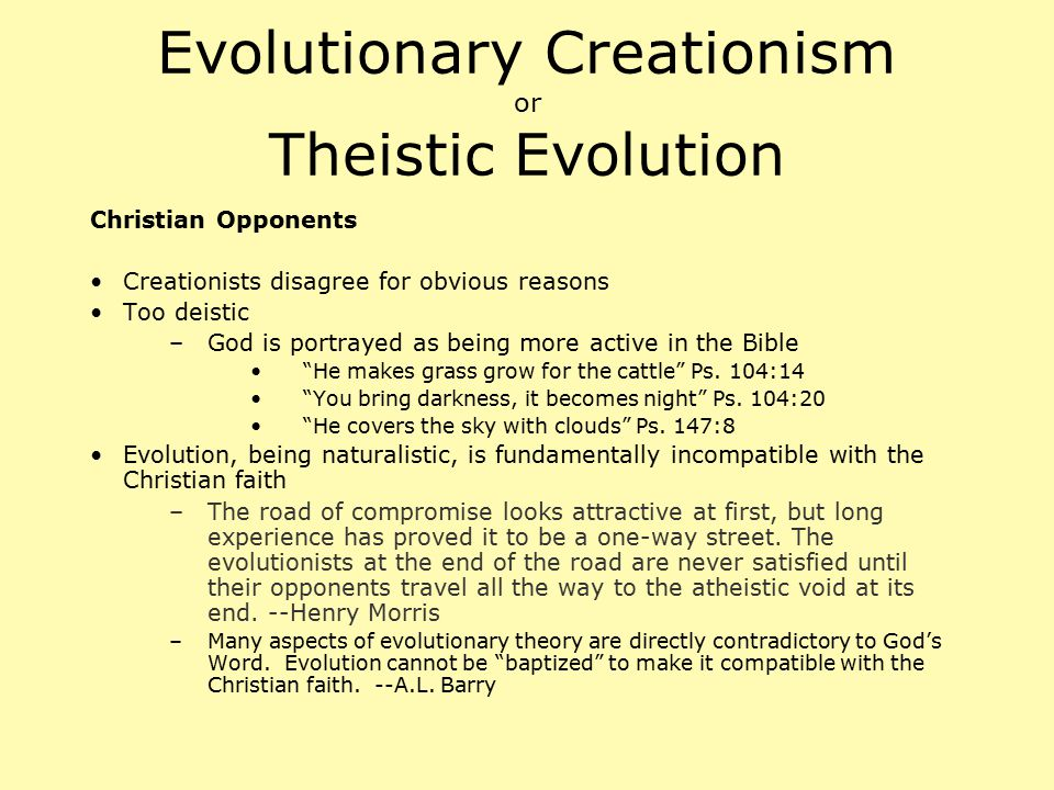 Evolutionary Creationism or Theistic Evolution Christian Opponents Creationists disagree for obvious reasons Too deistic –God is portrayed as being mo