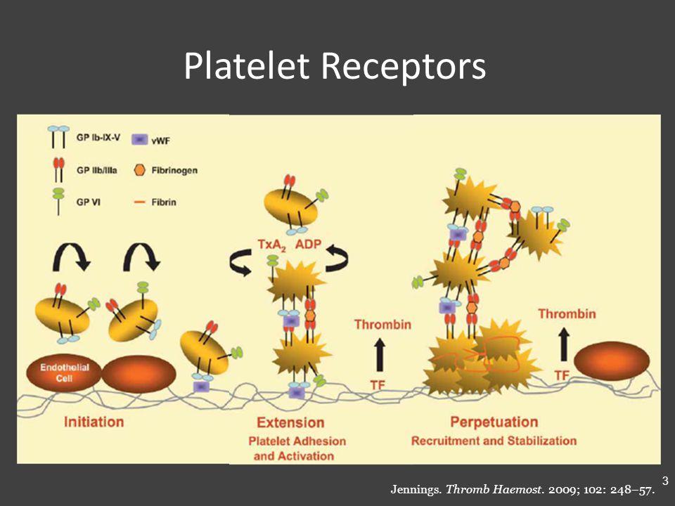 Platelet Receptors Jennings. Thromb Haemost. 2009; 102: 248–57. 3