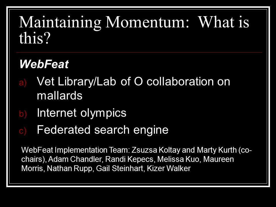 Maintaining Momentum: What is this.