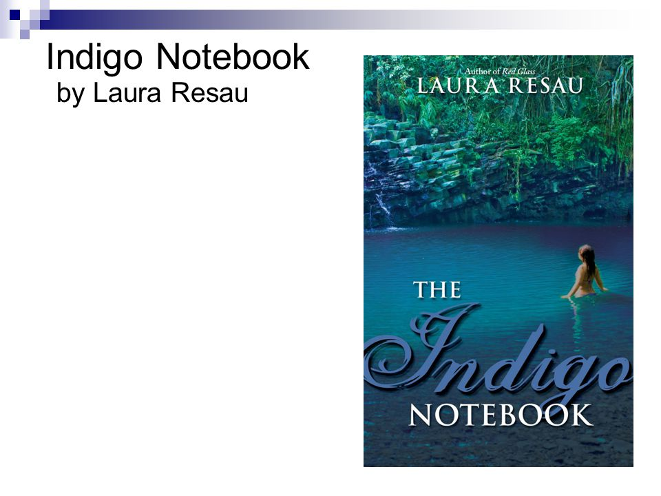 Indigo Notebook by Laura Resau