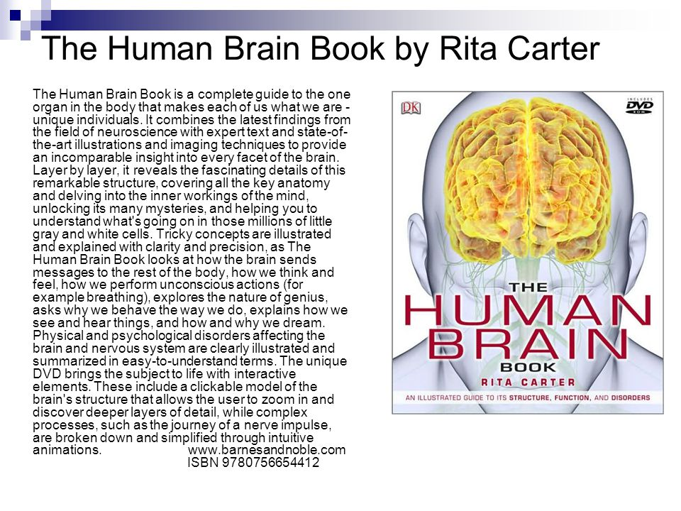 The Human Brain Book by Rita Carter The Human Brain Book is a complete guide to the one organ in the body that makes each of us what we are - unique individuals.