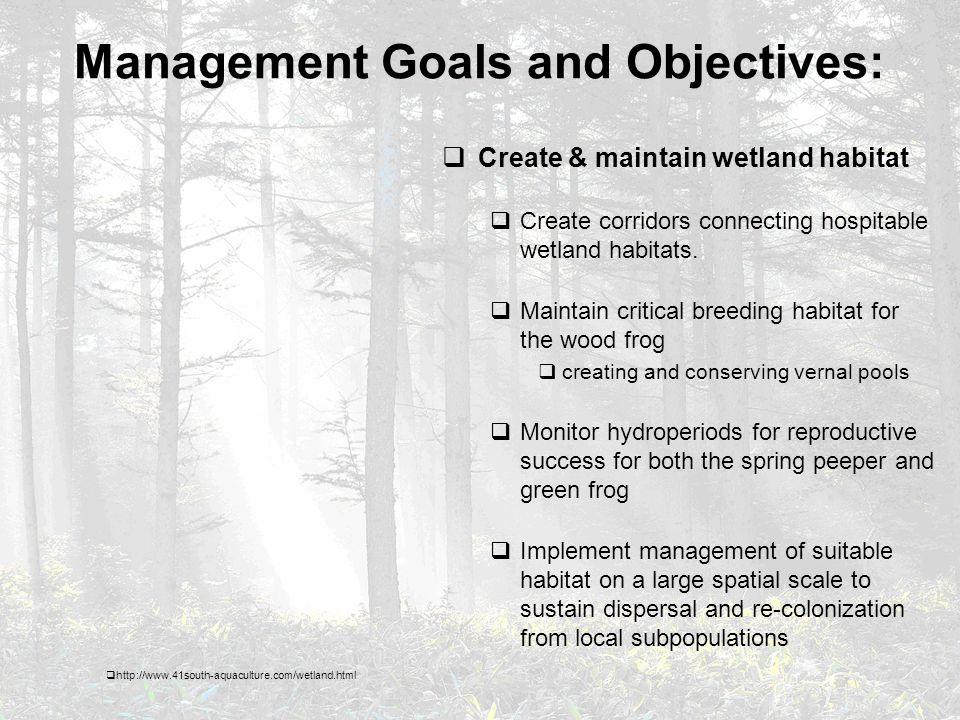 Management Goals and Objectives:  Create & maintain wetland habitat  Create corridors connecting hospitable wetland habitats.