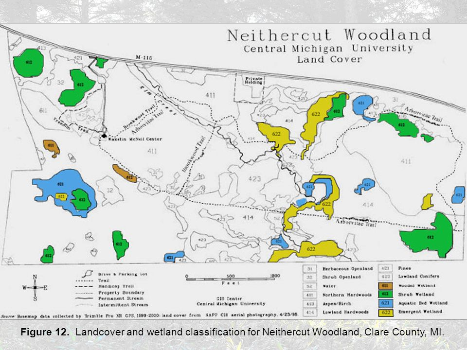 Figure 12. Landcover and wetland classification for Neithercut Woodland, Clare County, MI.