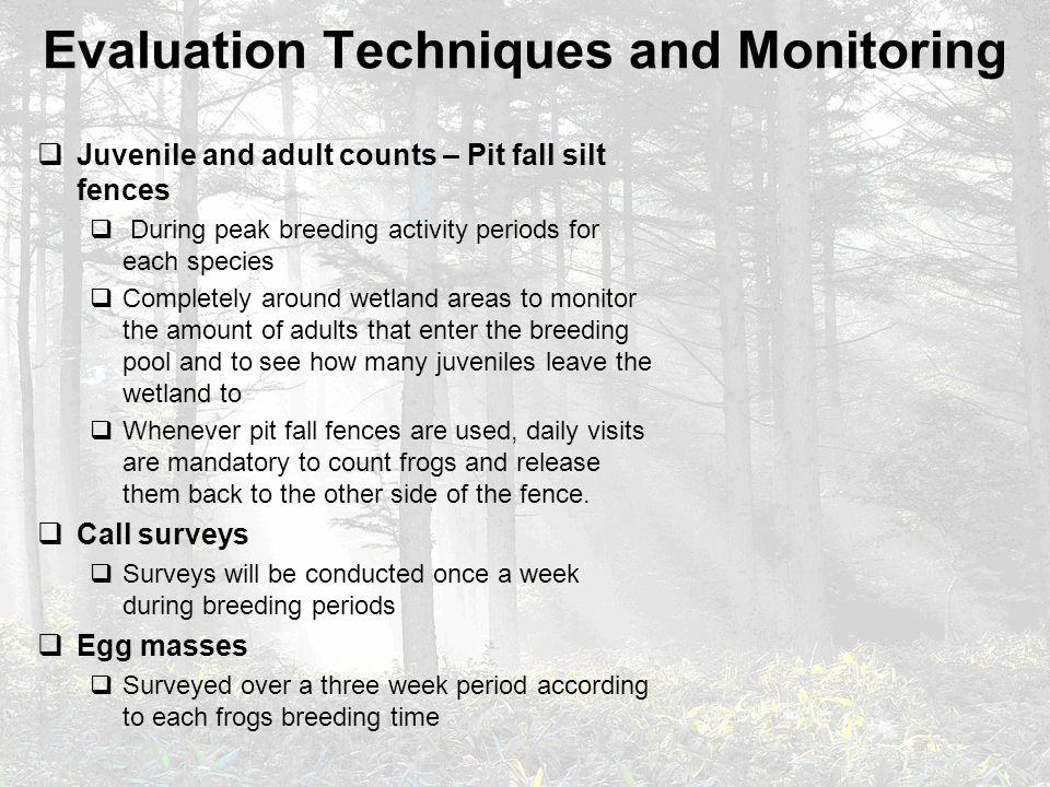 Evaluation Techniques and Monitoring  Juvenile and adult counts – Pit fall silt fences  During peak breeding activity periods for each species  Com