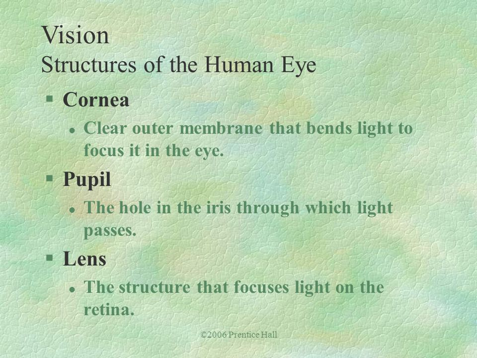 ©2006 Prentice Hall §Cornea l Clear outer membrane that bends light to focus it in the eye. §Pupil l The hole in the iris through which light passes.
