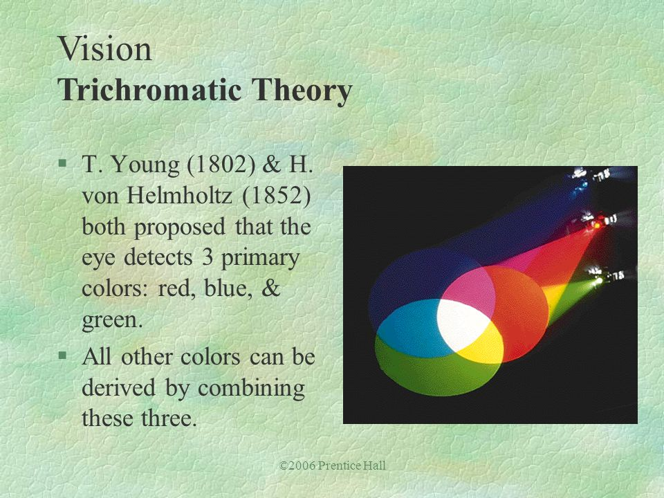 ©2006 Prentice Hall §T. Young (1802) & H. von Helmholtz (1852) both proposed that the eye detects 3 primary colors: red, blue, & green. §All other col
